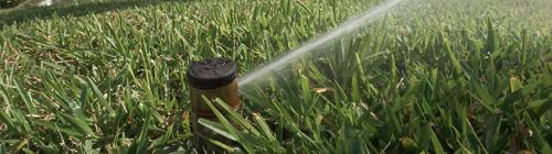 Plant City Water Restrictions 8